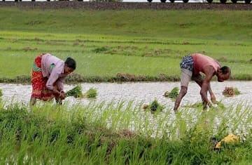 farmers lok sabha elections 2019