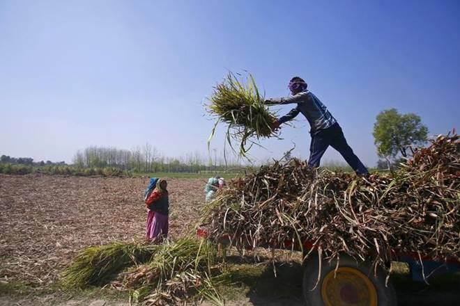 farm loan lok sabha elections 2019