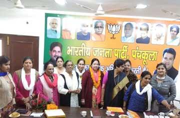 Lok Sabha Elections 2019 BJP  Haryana